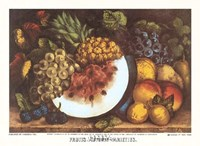 Fruits Autumn Varieties Fine Art Print