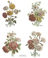 Florals (Set of Four) Fine Art Print