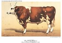 "Boeuf-Comtoise by Paul Cezanne - 12"" x 9"", FulcrumGallery.com brand"