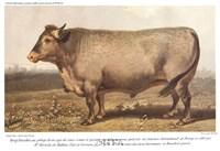 "Boeuf-Bazadais by Paul Cezanne - 12"" x 9"", FulcrumGallery.com brand"