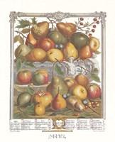 January/Twelve Months of Fruits, 1732 Framed Print