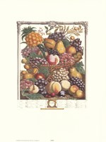 October/Twelve Months of Fruits, 1732 Fine Art Print