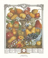 November/Twelve Months of Fruits, 1732 Framed Print