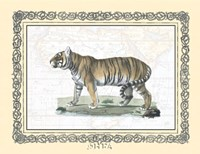 "Tiger - patterned frame by Carol Ican - 13"" x 10"""