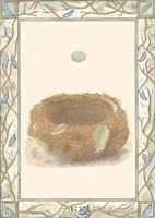 Woodland Nest III Framed Print