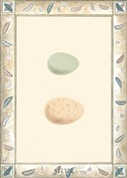 Antique Eggs II Fine Art Print