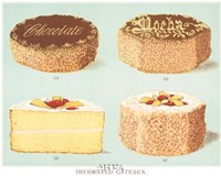 Decorated Gateaux-Chocolate Fine Art Print