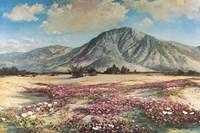 Desert in Spring Fine Art Print
