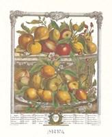 April/Twelve Months of Fruits