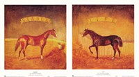 """Stable Life (Set of Two) by Thomas LaDuke - 20"""" x 11"""""""