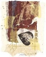 "Leaf Study II by Marsh Scott - 16"" x 20"""