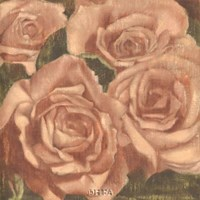 Rose Cluster II Fine Art Print