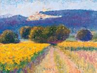 Lacoste Fine Art Print
