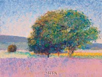Trees in Provence Fine Art Print