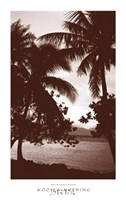 Moorea Morning Fine Art Print