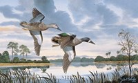 Blue Wings in Flight Fine Art Print