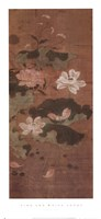Pink and White Lotus Fine Art Print