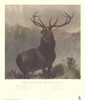 Monarch of the Glen Fine Art Print