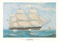 Clipper Ship Shannon Fine Art Print