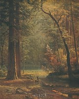 "Dogwood by Albert Bierstadt - 25"" x 31"""