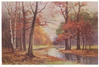 "Autumn Glade by Robert Wood - 37"" x 26"""