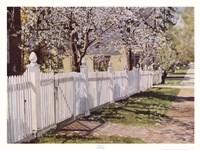 Spring Walk Fine Art Print