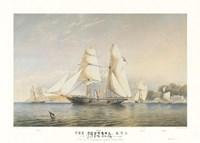 The Kestrel, R.Y.S. Fine Art Print