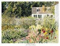 Late Summer Garden Fine Art Print