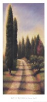"Tuscan Road I by David Wander - 18"" x 40"""