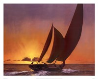 Sails In The Sunset Fine Art Print