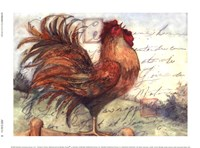 "8"" x 6"" Rooster Pictures"