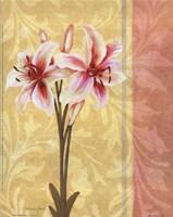 Flower Bouquet III Framed Print