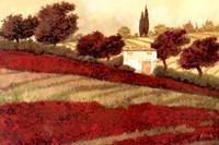 Apapaveri Toscana I Fine Art Print