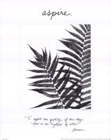 Aspire Fine Art Print
