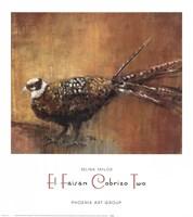 El Faisan Cobrizo Two Fine Art Print