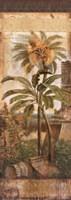 Antilles II Fine Art Print