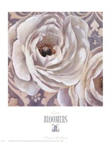 Bloomers II Framed Print