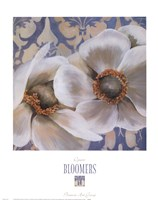 Bloomers IV Framed Print