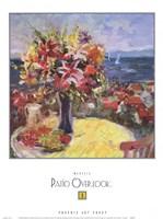 Patio Overlook 1 Fine Art Print