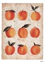 "Peach Collage by Angie Bridenball - 5"" x 7"""