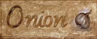 Onion Fine Art Print