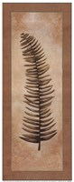 "Ferns Palms IV by Diane Cochrane - 8"" x 20"""