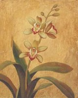 Orchid In Landscape I Fine Art Print