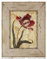 Antique Botanicals VI Fine Art Print