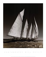 "Sailing at Cowes II by Bill Philip - 16"" x 20"""