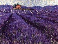 Lavender Fields I Fine Art Print