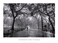 Poet's Walk, New York City Framed Print