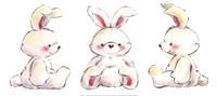 Rabbits Framed Print