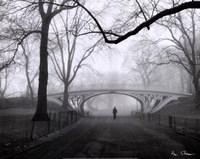Gothic Bridge, Central Park, NYC Framed Print