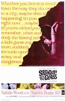 Splendor in the Grass Natalie Wood Wall Poster